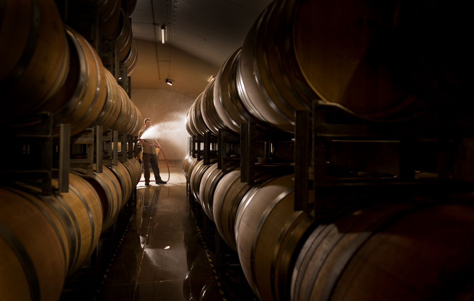 Winemaker Dave Sutton in the Te Kano barrel room