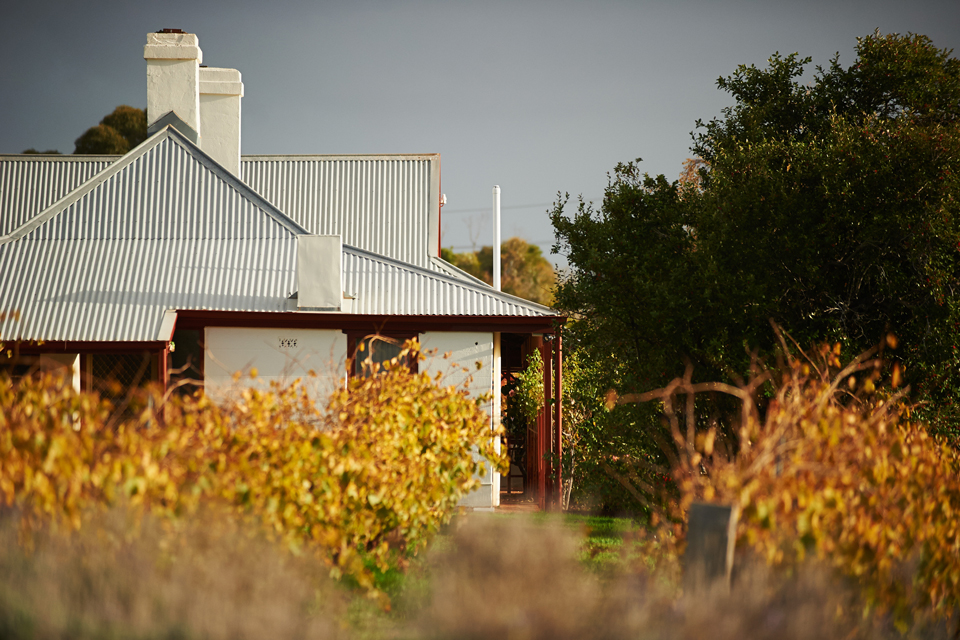 Penfold's Magill Estate ranked highly in the Top 50 World's Best Vineyards.