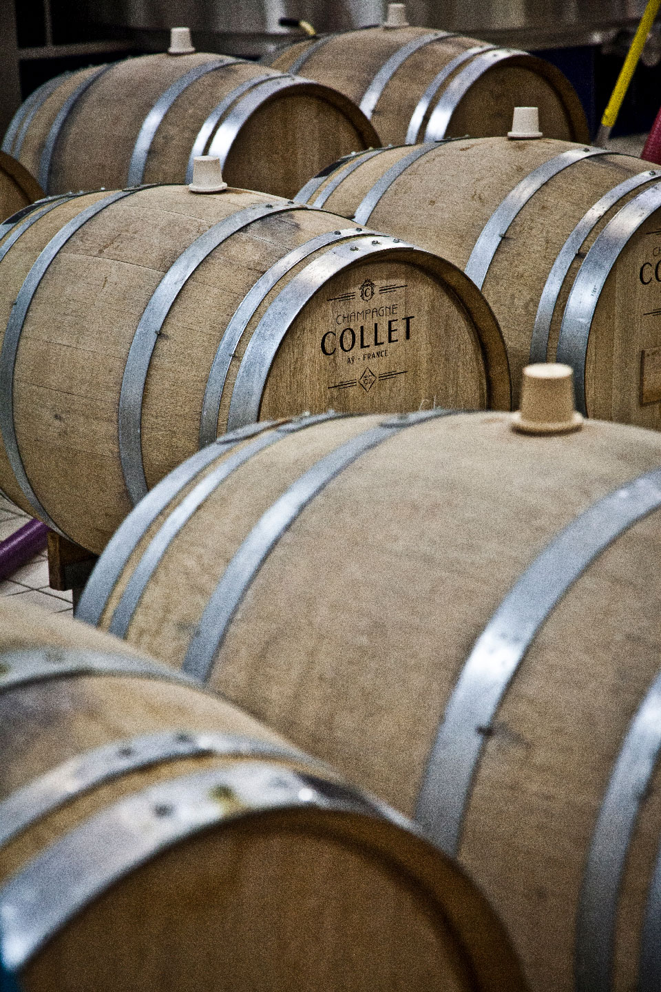 Locally made oak barrels at Collet.